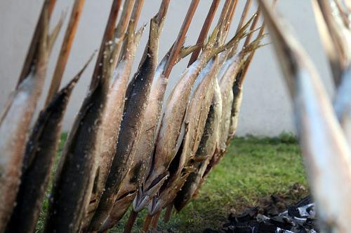 Dica de churrasco - peixe fogo de chão